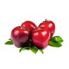 Колоновидные яблони: посадка и уход